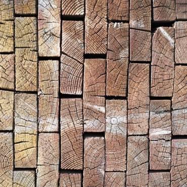 Carpenteria in legno fresco o essiccato?